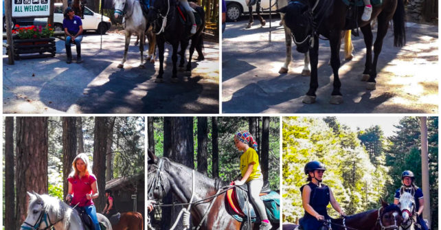 HORSE RIDING ALLO CHALET!